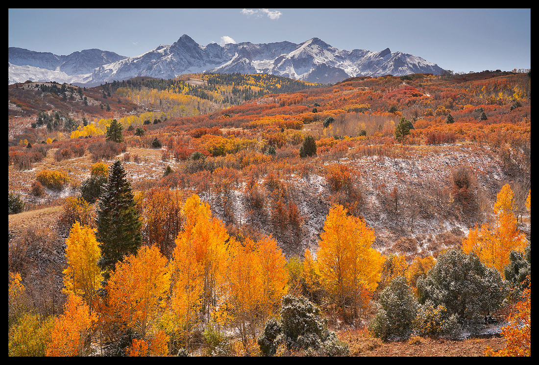 Dallas Divide fall colors 4, CO