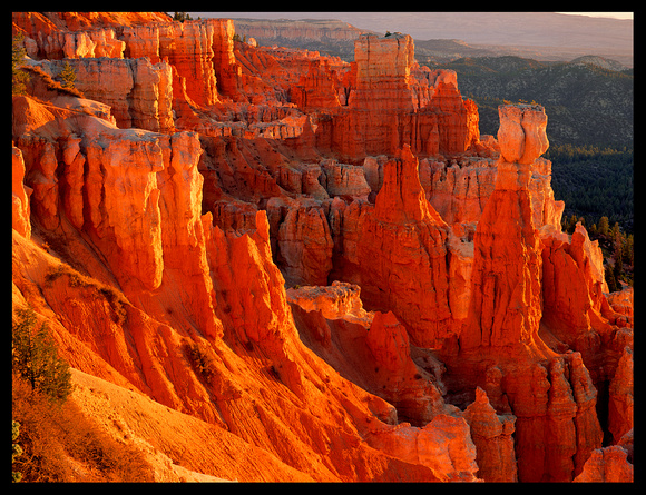 Bryce National Park (C14)