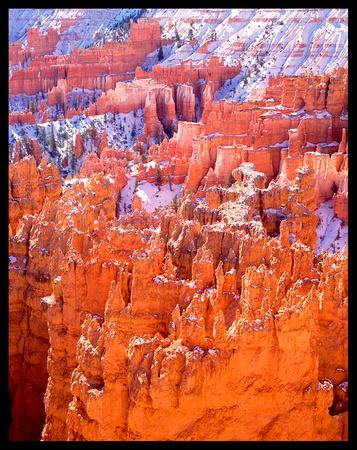Bryce National Park (P218)