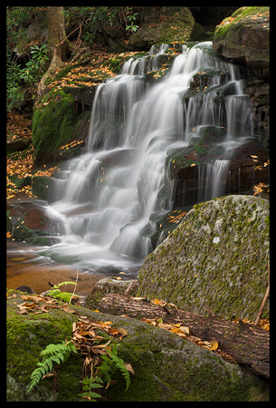 Lower Elakala Falls 2 - Blackwater Falls State Park