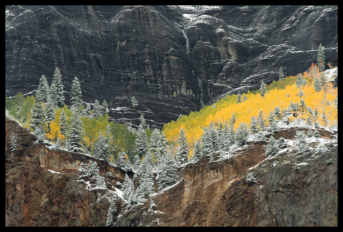 Fall colors 1, CO