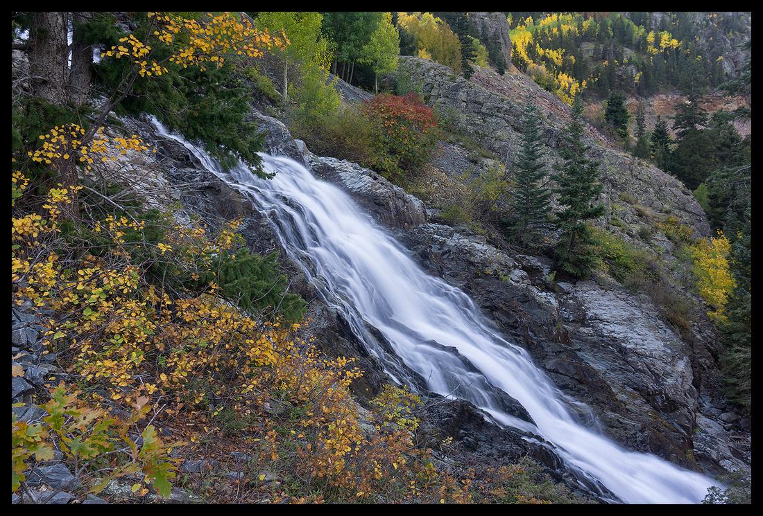 Fall colors 4, CO