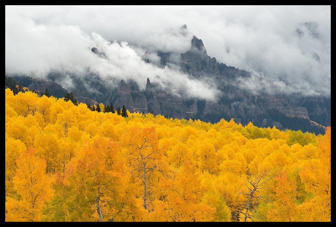 Fall colors 6, CO