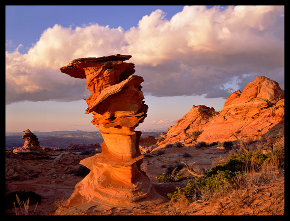 Coyote Buttes (P115)