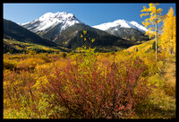 Red Mountain fall colors 1, CO