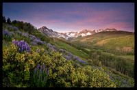 Mount Sneffels and Lupine 3, CO